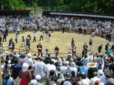 画像:全国闘牛サミットin久慈大会が開催されました