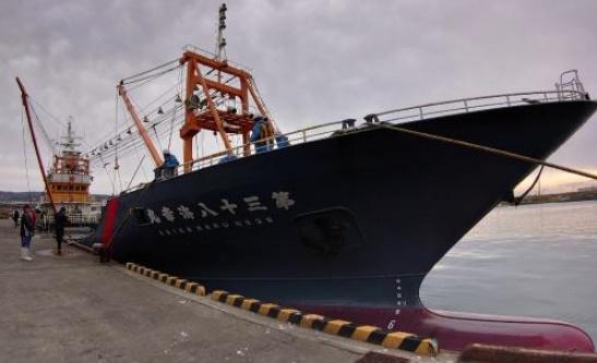 画像:鯖の巻き網船が入港しました。