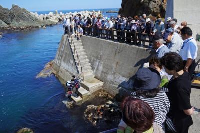 画像:北限の海女素潜り実演スタート