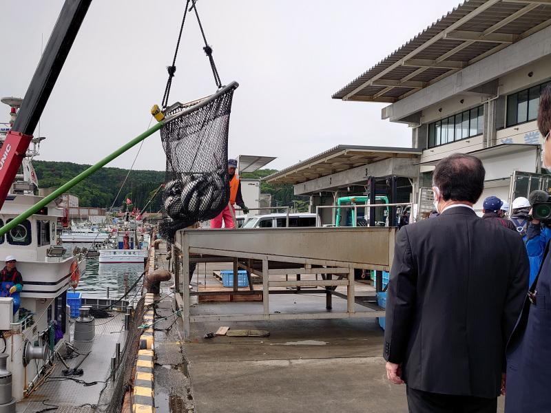 210527 ギンザケ今期初水揚げ (1).JPG